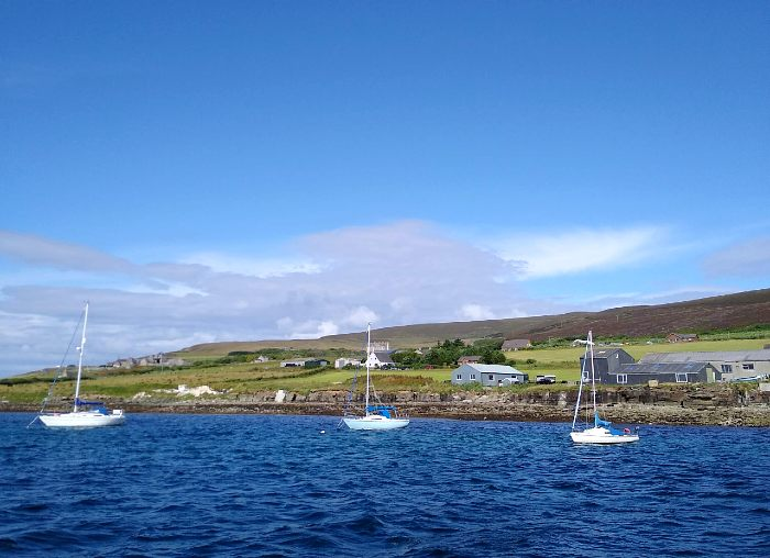 Our First Summer in the Orkney Islands