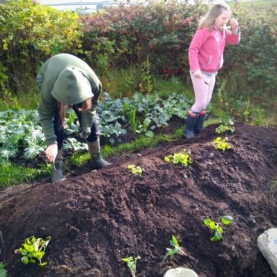 permaculture-for-kids