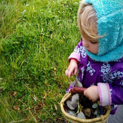 kids-natural-craft-materials