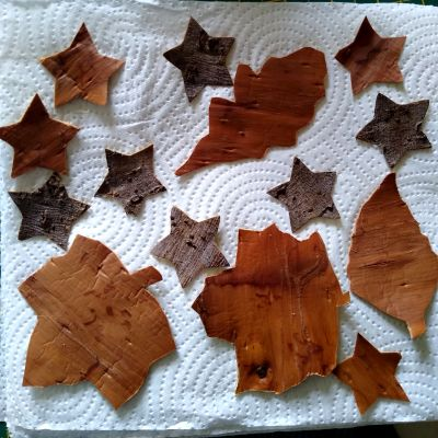 using-willow-bark-for-craft