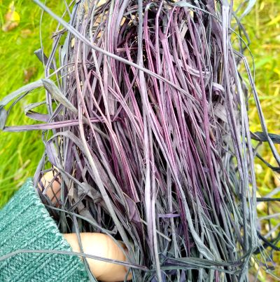 blackberry-dyed-raffia