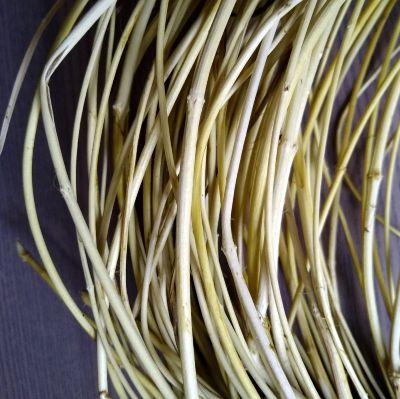 stripped-honeysuckle-vine-ready-for-basket-weaving