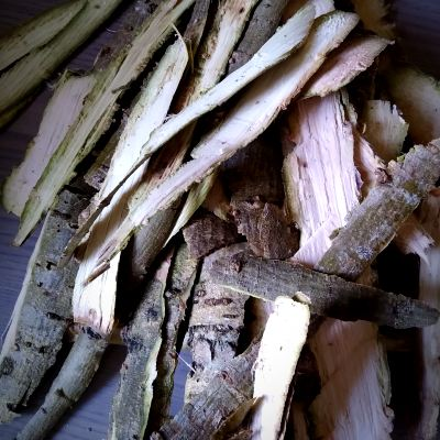 willow-bark-for-dyeing