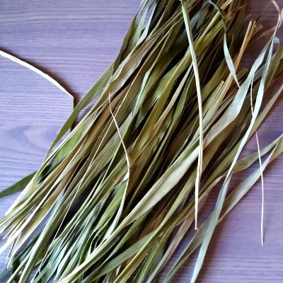 great-wood-rush-for-basketry