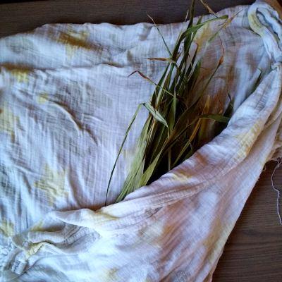 preparing-dry-leaves-for-basketry