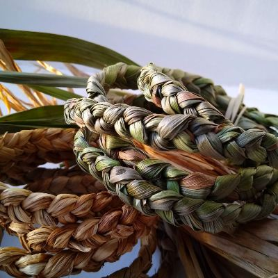 plaited-wood-rush-for-basketry