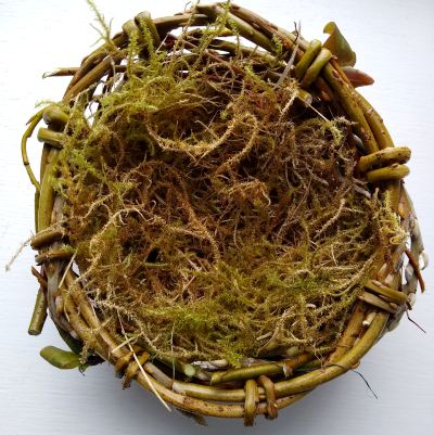 make-your-own-spring-nest