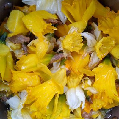 soaking-daffodil-heads-for-dye
