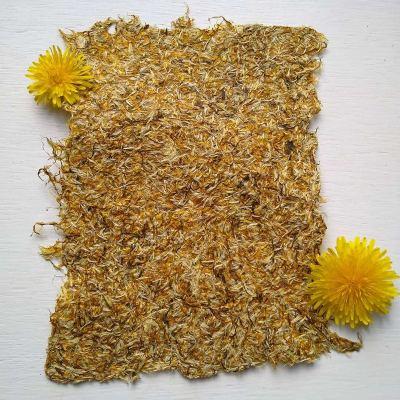 dandelion-paper