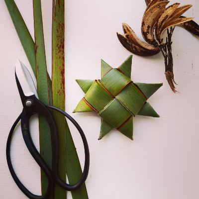 new-zealand-flax-for-weaving