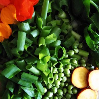 homegrown-vegetables-orkney