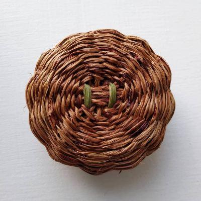 phormium-tenax-basket