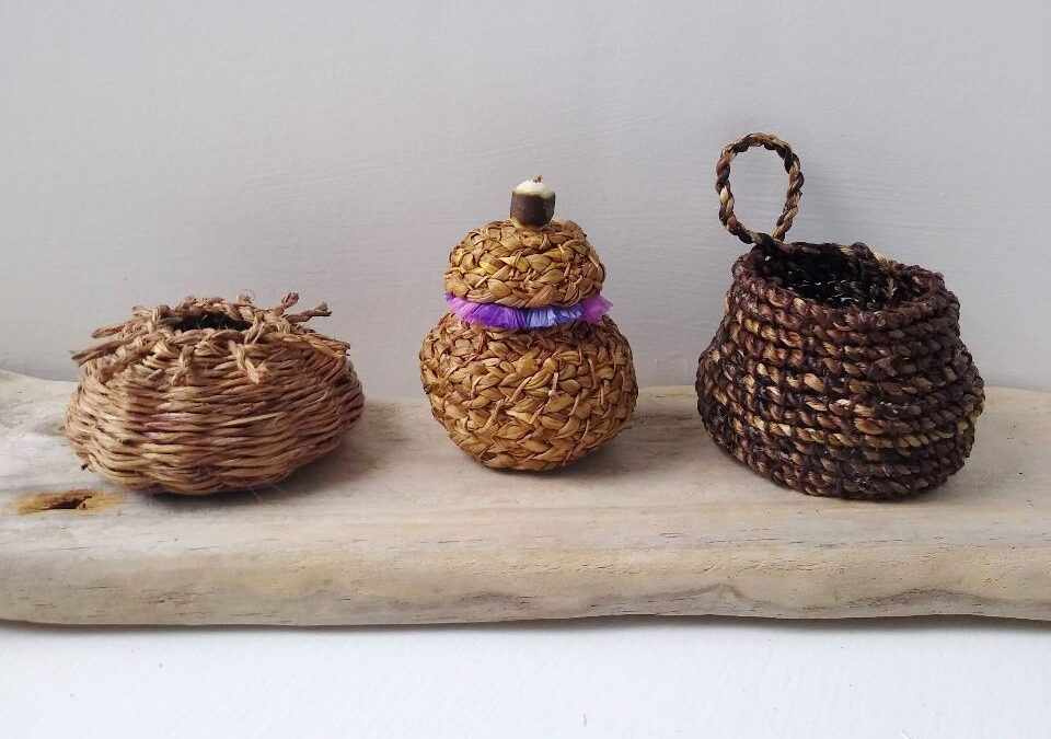 sing-plants-from-the-garden-for-basketry